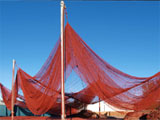 Knox has been making nets for fish farms throughout the world since the industry's beginnings. Years of involvement means that they offer sound technical knowledge and the expertise to meet your requirements.